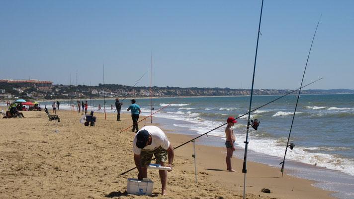 im Wasser sind nur die Fischer