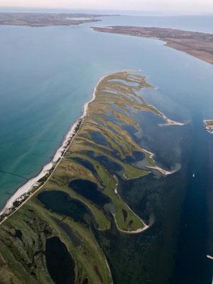 noch ein schöner Abendflug über der Ostsee: Graswarder