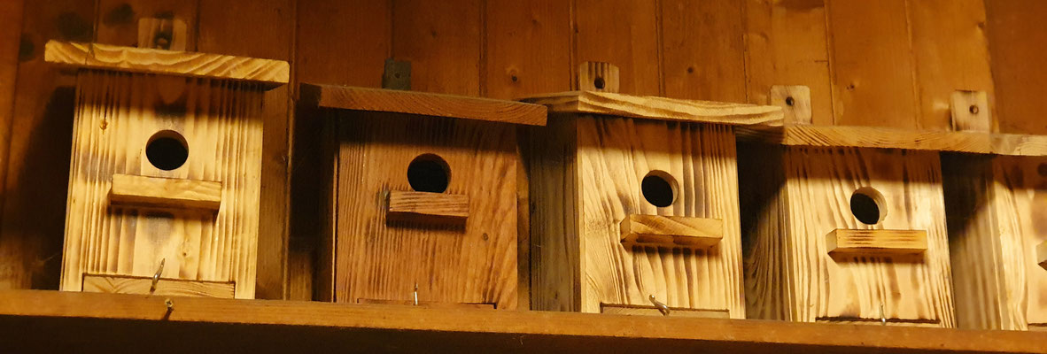 Vogelnistkästen