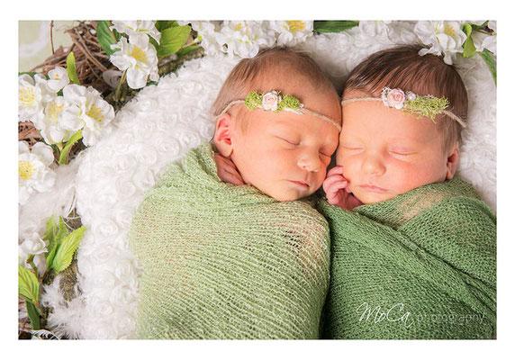 Zwillinge Karte zur Geburt