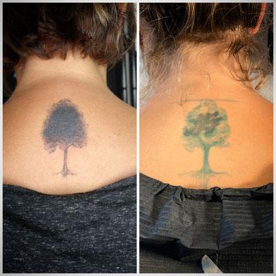 #Cover-up Tattoo #Dotwork-Three