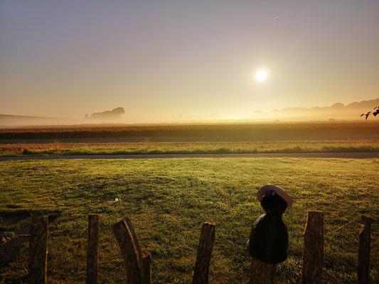 morgens um 7 in Ostfriesland