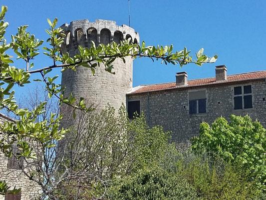 Viens : La Tour du Château