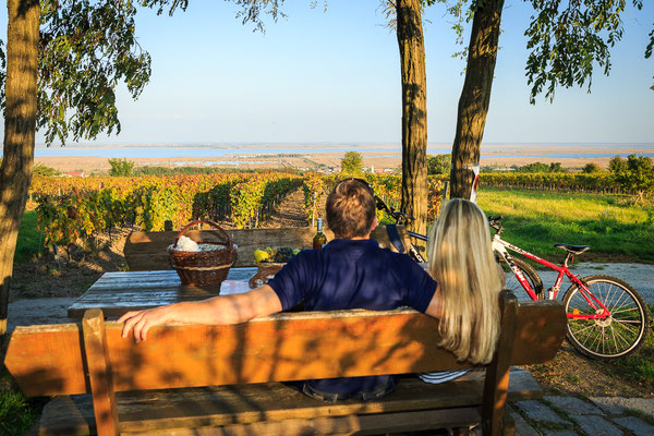 enjoy the beautiful area at Lake Neusiedl