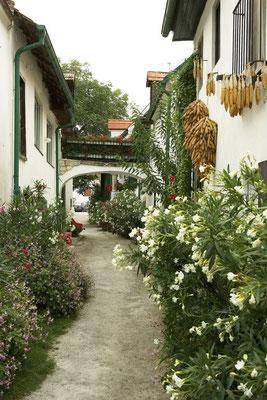 Mörbisch - a picturesque village