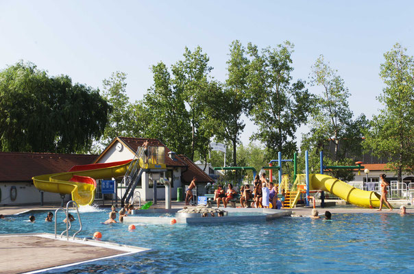 enjoy swimming at lake Neusiedl
