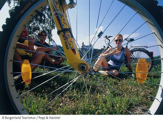wonderful cycling area around Lake Neusiedl