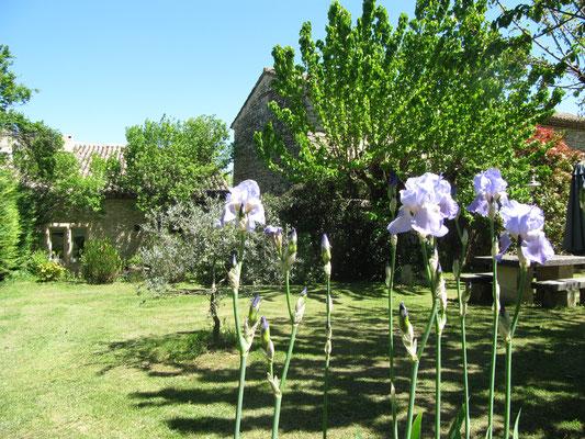 Les Lilas - Gartenbereich für die Gäste mit Steintisch und weiteren Sitzplätzen