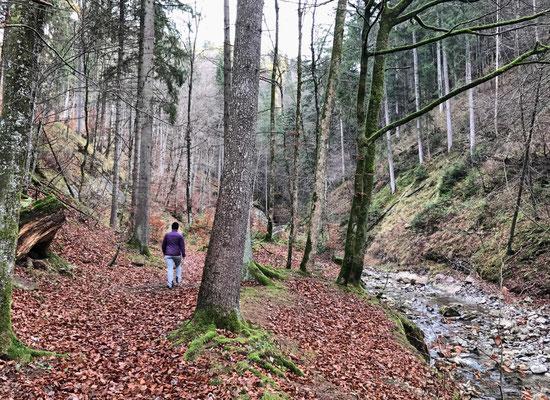 Weg zum Wasserfall in Berg