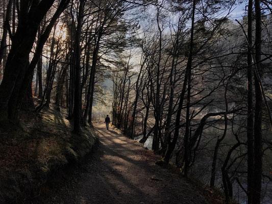Weg durch die Eggstätt-Hemhofer Seenplatte
