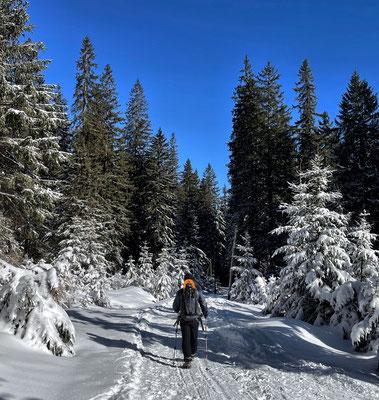 Abstieg von der Riesenhütte