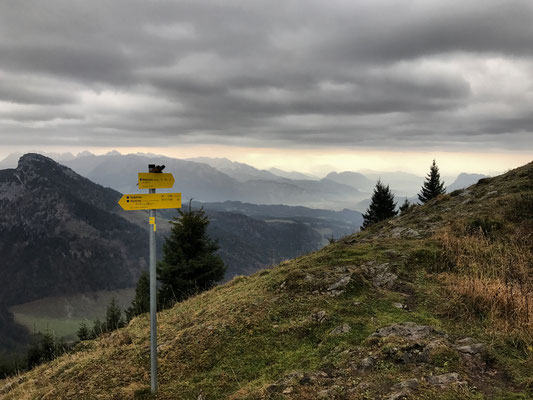 Der Wilde Kaiser taucht aus dem Dunst auf, im Vordergrund links der Spitzstein