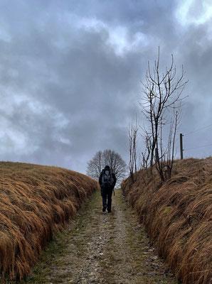 Auf dem Weg nach Wenk
