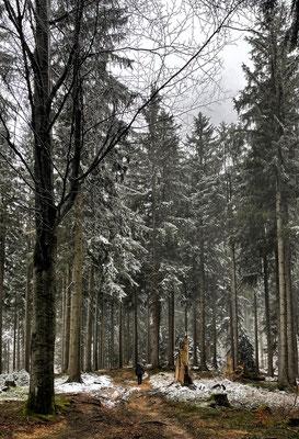Zwischen Winterstubn und Kräuterwiese