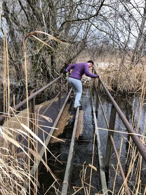 Abenteuerlicher Rest einer Brücke über den Wöhrgraben