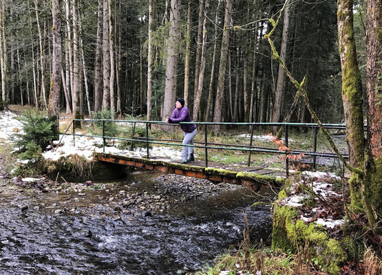 Brücke im Pfifferloher Wald