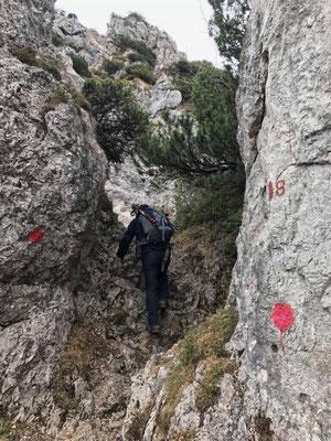 Abstieg in den Sattel zwischen Spitzstein und Brandelberg