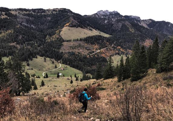 Abstieg in den Dalsen-Sattel
