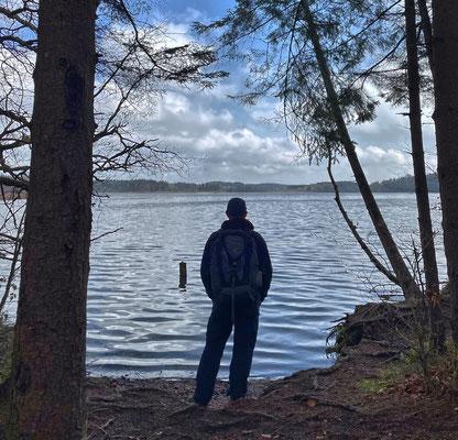 Am Südende des Hartsee