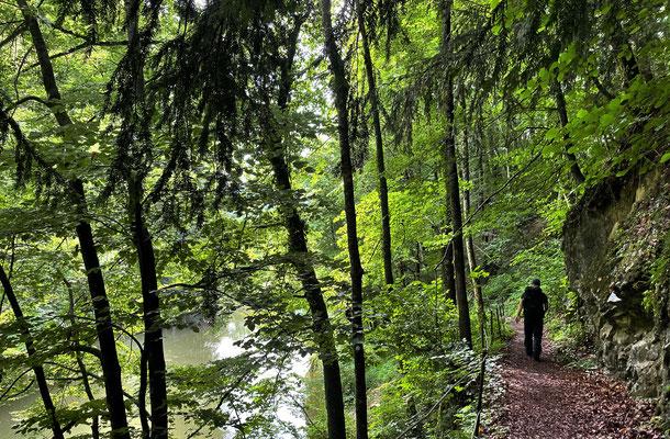 Auf dem Rückweg vom Trockenbach-Wasserfall