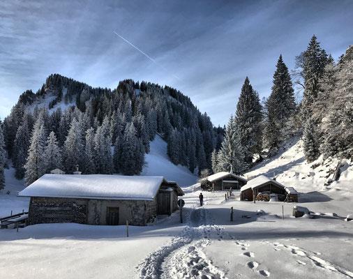 Laubensteinalm im Winter