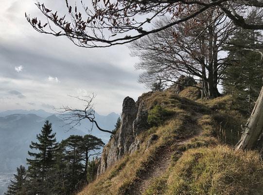 Abstieg vom Heuberg-Grasgipfel nach Nußdorf