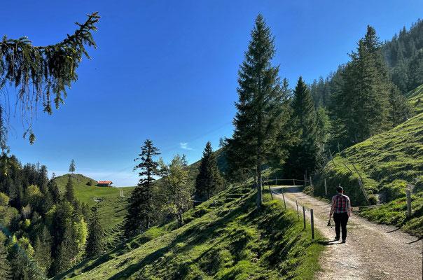 Auf dem Weg zur Ebersberger Alm