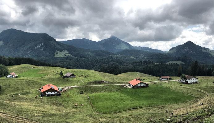 Blick zurück auf die Daffnerwald-Almen