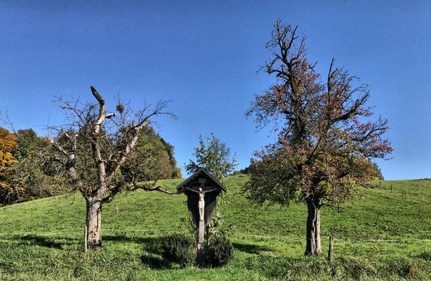 Feldkreuz bei Pinswang