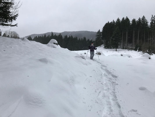 Beim Abstieg über die Kräuterwiese