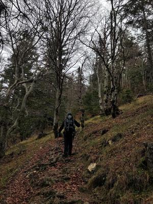 Gegenanstieg zur Bergstation der Kampenwandbahn