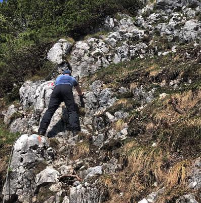 Leichte Kletterei am seilversicherten Steig zur Hochplattenscharte