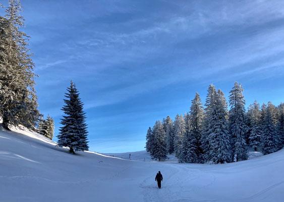 Winterlandschaft kurz vor der Laubensteinalm