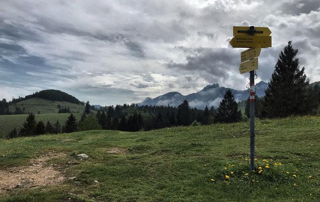 Zwischen Frasdorfer Hütte und Winterstubn