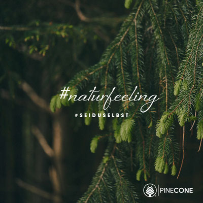 PINECONE - NATURFEELING