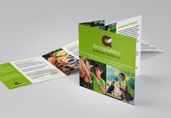 animalia_med_corporatedesign_flyer_logodesign_imagebroschüre