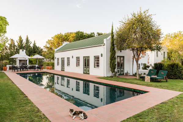 15m-Swimming Pool and Breakfast Area