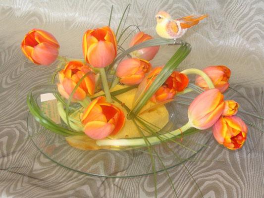 CT15-Tulipe orange