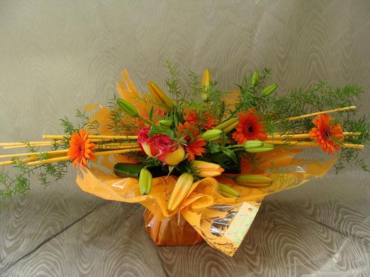 BHS6-lis orange, germini orange et rose orangé