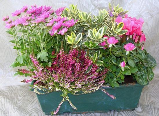 CPE9-Jardinière de Plantes d'Extérieures   -Prix:43 €