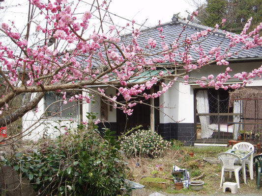 春のふるさと村