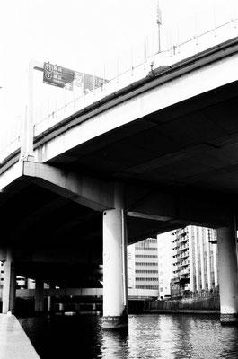 首都高の下を行く。入り組んだ高速道路を下から眺められる。