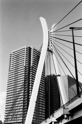 セーヌ川と姉妹川と言うことでフランス人によるデザインの橋。兜をイメージだそうだ