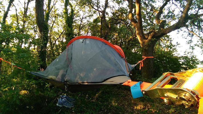 Tree Tents Experience Camp