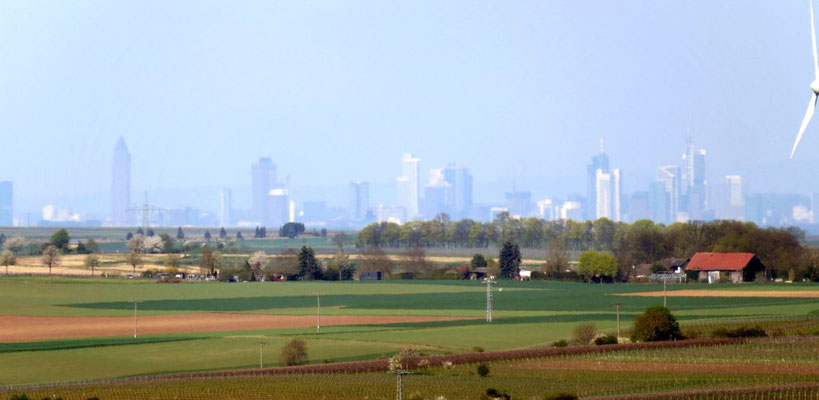 Frankfurt in 50Km Entfernung