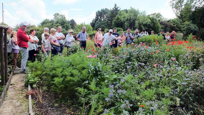 Im Imkergarten angekommen, konnten aller erst einmal die kunterbunte Vielfalt an Pflanzen und Blüten bewundern. Schmetterlinge und Bienen rundeten das romantische Frühlingswiesenbild ab.