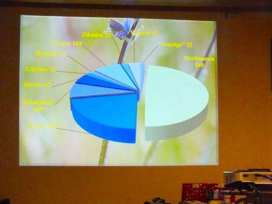 Sandgrube Monsheim. Statistik verschiedene Insektensorten