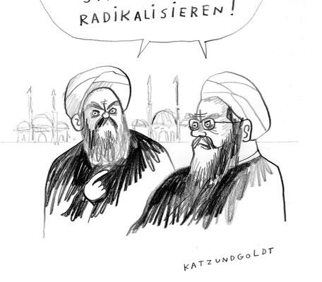 """Originalzeichnung """"Radikalisieren"""""""