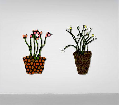 The flowers pots