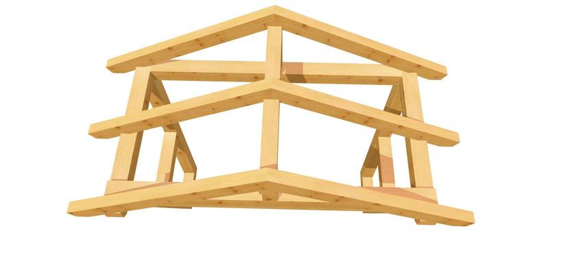 Holz Vordach-Satteldach selber bauen 2m x 2,24m